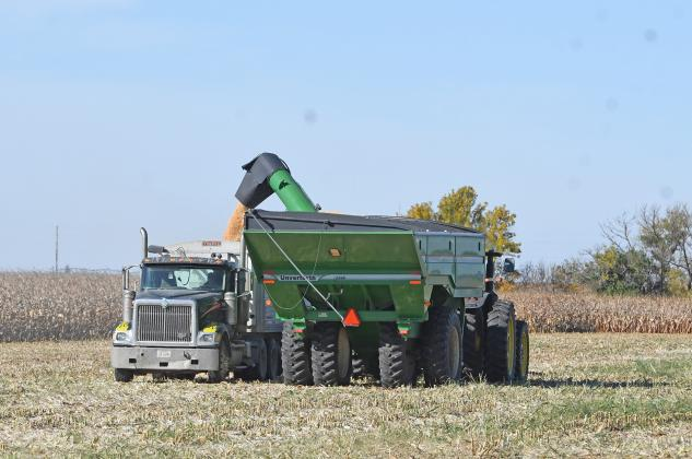 Farmers are out in force all around Hamilton County harvesting their crops while the weather remains pleasant. This operation was moving grain south of Aurora.