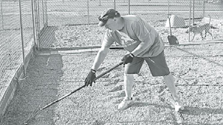 Carlin Engert helps to redistribute the gravel in the outside dog pins under the watchful eye of one of the canine residents. News-Register/Jeni Moellenberndt